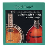 Gold Tone BTS Guitar Banjitar Strings