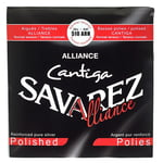 Savarez 510ARH Alliance Cantiga