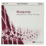 Bow Brand Burgundy Ped. 2nd B Gut No.11