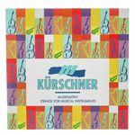 Kürschner D2091 Tenor / Bass Gamba Str.