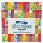 Kürschner D2116 Tenor / Bass Gamba Str.