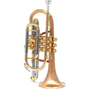 Carol Brass CCR-6882T-GSS-SLB