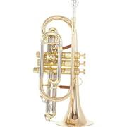 Carol Brass CCR-6882T-GSS-L B-Stock