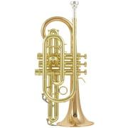 Carol Brass CCR-3880-GSS-Bb-L B-Stock