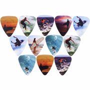 Grover Allman Surfer Tin Picks