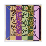 Pirastro Passione Solo Violin 4/4 KGL