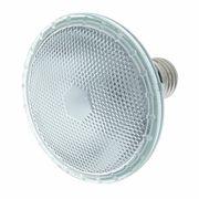 Varytec Lamp PAR 30 230V 75W 1500h Flo