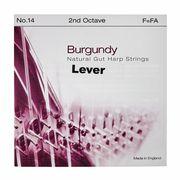 Bow Brand Burgundy 2nd F Gut Str. No.14