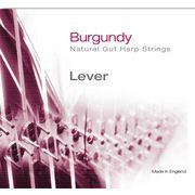 Bow Brand Burgundy 5th F Gut Str. No.35