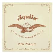 Aquila 40NNG New Nylgut Lute Strings