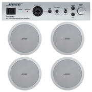Bose FreeSpace IZA250 + DS40 Bundle