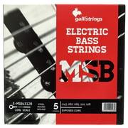 Galli Strings ECS5 Exposed Core Bass Str.