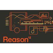 Reason Studios Reason 12 Upgrade 1