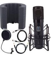 Large Diaphragm Microphones