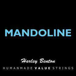 Harley Benton Valuestrings Man 10-34