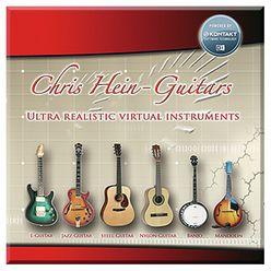 Best Service Chris Hein Guitars