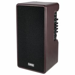 Laney A-Duo