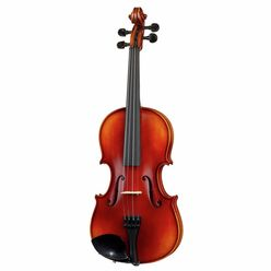 Gewa Allegro VL1 Violin Set B-Stock