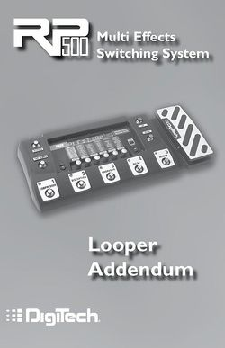 Looper Addendum