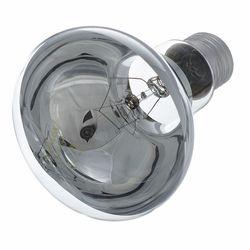 R80 Lamp E27 Clear Omnilux