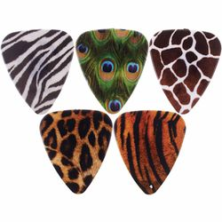 Animal Print Picks Grover Allman