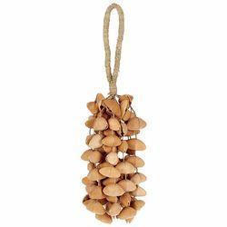Seed Shaker XXL Cha Cha Nut Terre