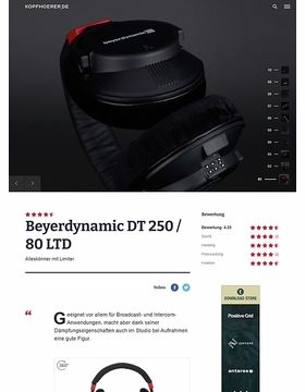 Beyerdynamic DT-250/80 LTD