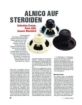 Alnico Speaker VGT