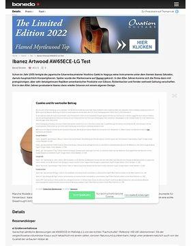 Ibanez Artwood AW65ECE-LG