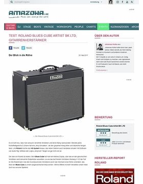 Roland Blues Cube Artist BK LTD