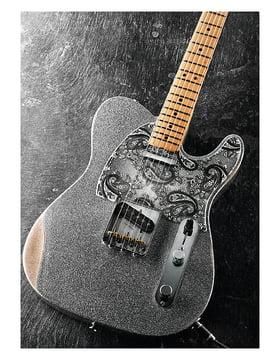Fender Brad Paisley Road Worn Telecaster