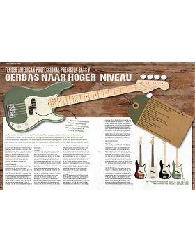 Fender American Professional Precision Bass V