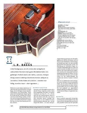 Gitarre & Bass L.R. Baggs Radius, Mandolinen-Tonabnehmer