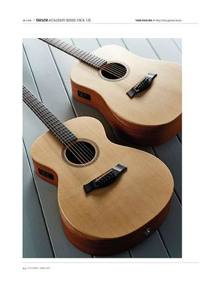 Guitarist Taylor Academy Series 10E