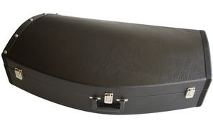 Cases/Bags for  Baritone.