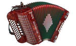 acordeones de Steir