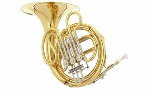 Bargains & Remnants French Horns
