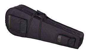 Acoustic Bass Cases