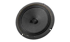 Loudspeakers for Guitar/Bass Use
