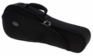 Cases and Bags for Other Instruments