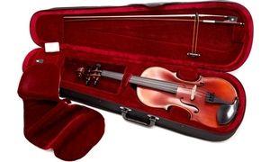 1/8, 1/10 and 1/16 Violins