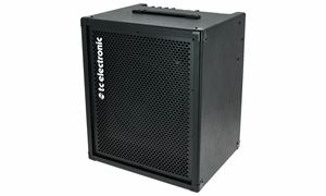 Bargains & Remnants Bass Amps