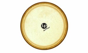 Bargains & Remnants Drumheads