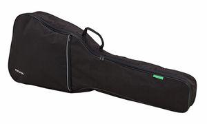 Guitar/Bass Accessories
