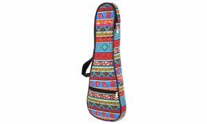 Taschen und Koffer für Folkloreinstrumente