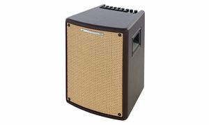 Bargains & Remnants Acoustic Guitar Amps