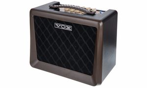 Bargains & Remnants Amplifiers for Acoustic Guitars