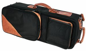 Cases/Bags for Saxophones