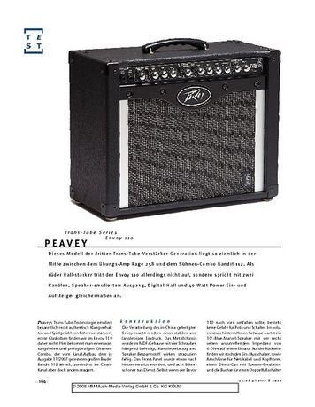 Gitarre & Bass Peavey Trans-Tube Series Envoy 110, Gitarren-Combo