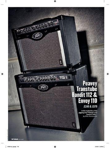 Guitarist Peavey Envoy 110